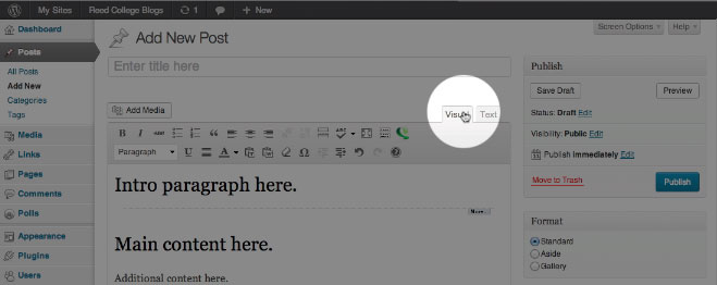 Wordpress Visual tab view